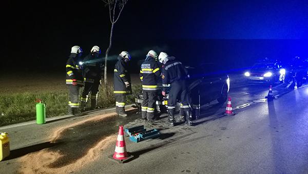 Verkehrsunfall nach Wildwechsel